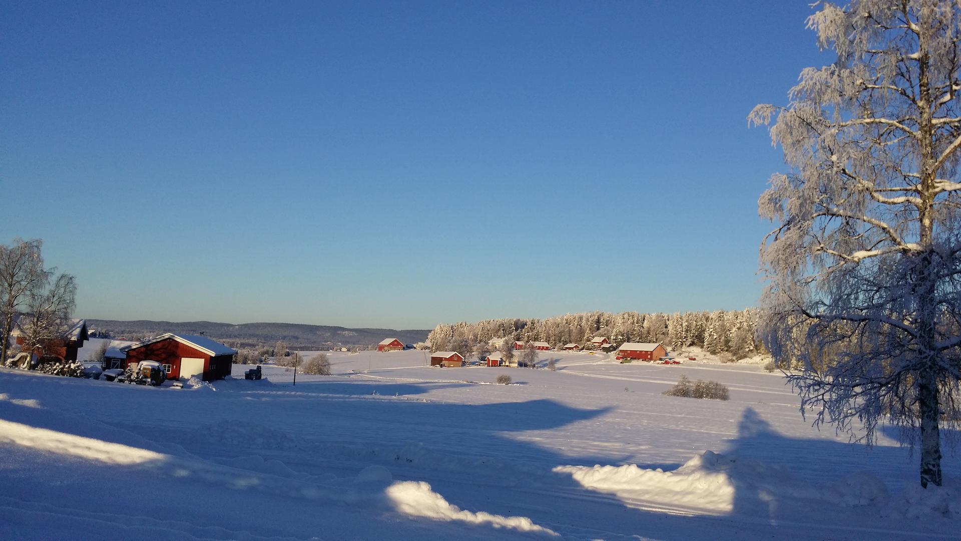 Vinter, snø, trær, små hus.