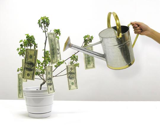 En plante med pengesedler på får vann fra en kanne.